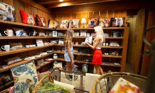 Mother and daughter looking at Florida pillow inside Andy Thornal Company in Lakeland, FL