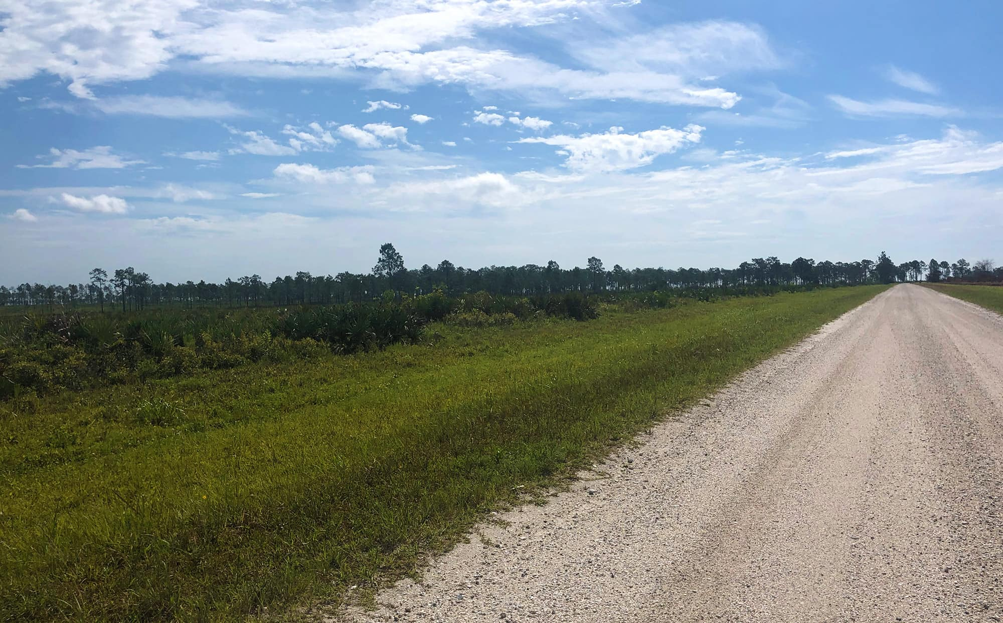 Slightly elevated gravel road extending into tree lined area ahead at Avon Park Air Force Range near Frostproof, FL