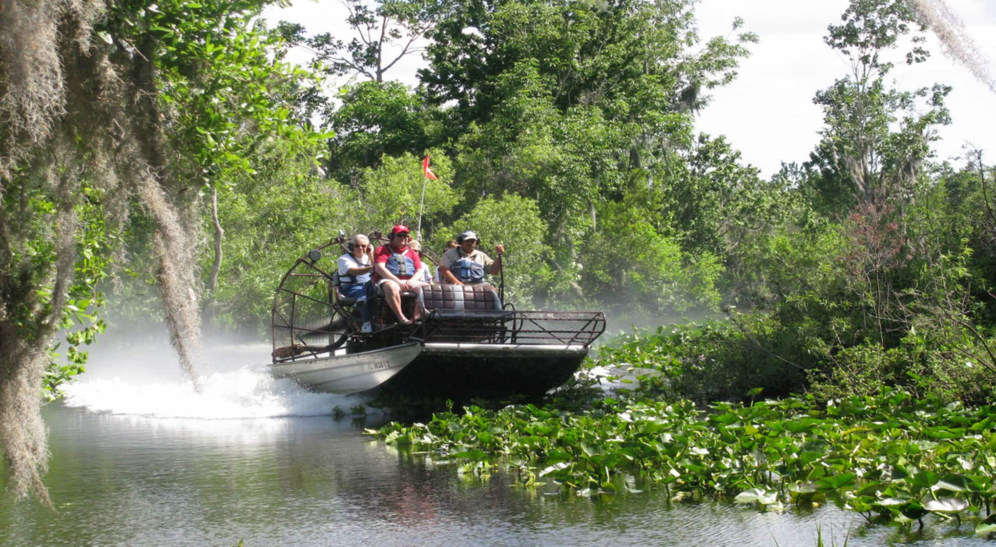 Group on airboat going over water and green plants with Captain Fred's Airboat Nature Tours