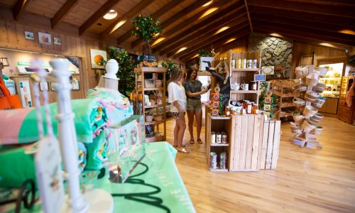 2 women shopping in citrus themed gift shop, Florida's Natural Grove Store in Lake Wales, FL