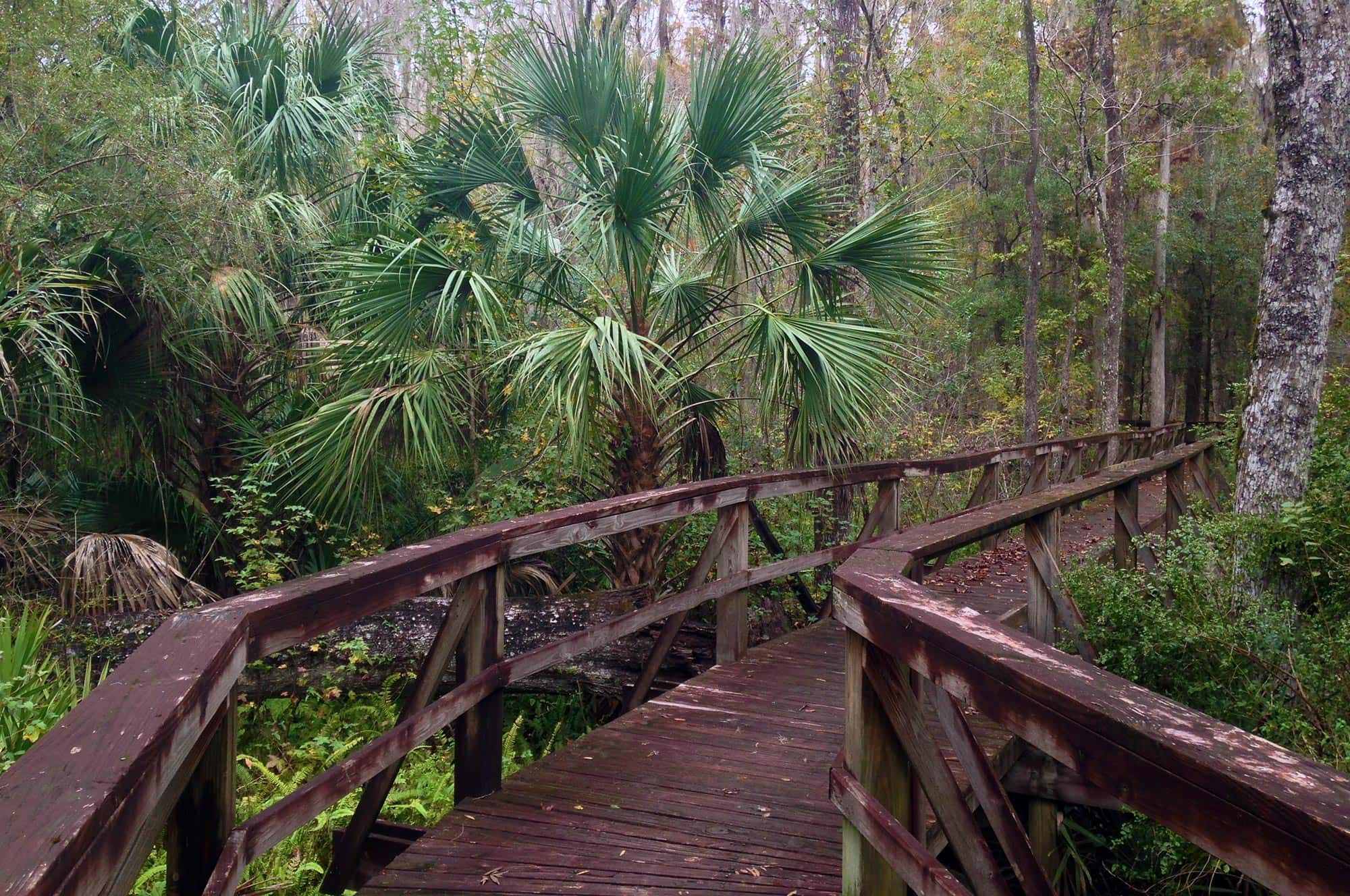 walking boardwalk at Mosaic Peace River Park in Bartow, FL