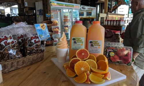 Soft serve ice cream, orange and tangerine juice, pecans, oranges and strawberries at Ridge Island Groves in Haines City, FL