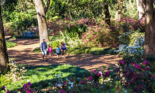 Bok Tower Gardens #3 in USA Today's 10 Best Gardens List