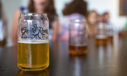 pints of beer at Grove Roots Brewing Co. in Winter Haven, FL