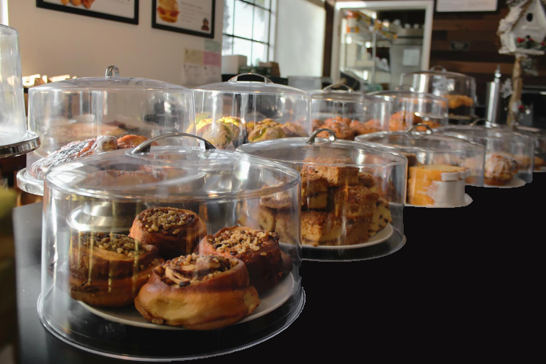 Counter of baked goods at Richard's Fine Coffees in downtown Winter Haven FL