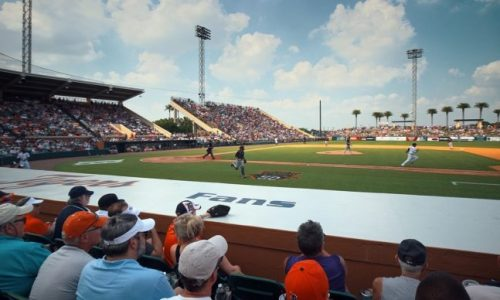 Detroit Tigers Spring Training