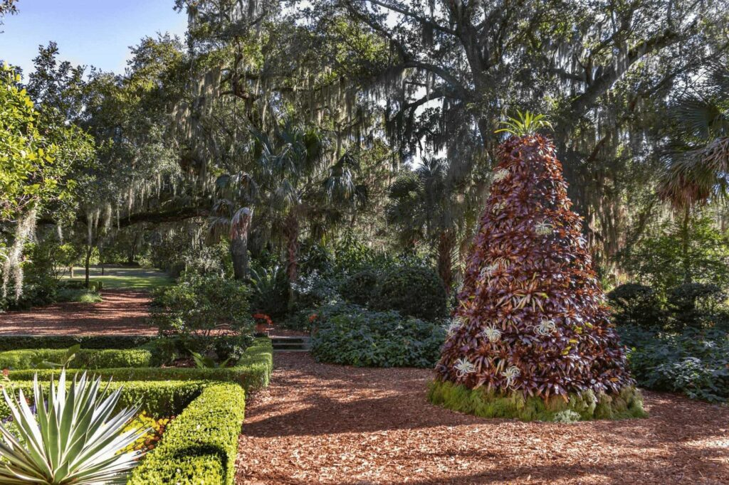 Bromeliad Christmas tree created for Holidays at Bok Tower Gardens in Lake Wales