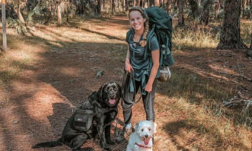 Two dogs and owner hiking at lake kissimmee state park